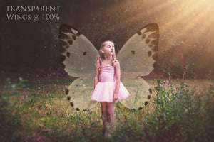 82 BUTTERFLY FAIRY WING OVERLAYS BUNDLE - Set 7
