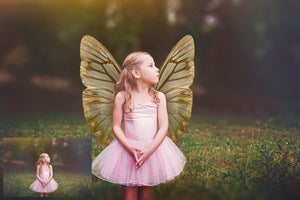 20 Png BUTTERFLY FAIRY WING Overlays Set 3