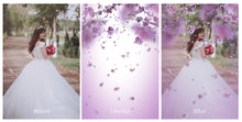 Load image into Gallery viewer, BLOSSOM PETALS AND BRANCHES Digital Overlays