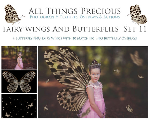 FAIRY WINGS and BUTTERFLIES Set 11