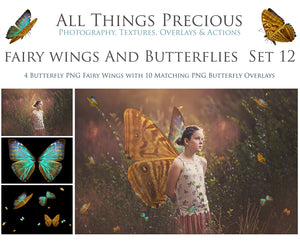 FAIRY WINGS and BUTTERFLIES Set 12
