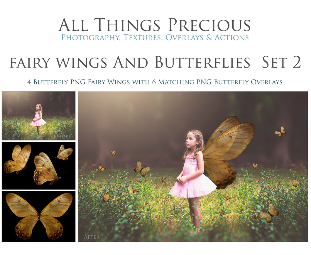 FAIRY WINGS and BUTTERFLIES Set 2