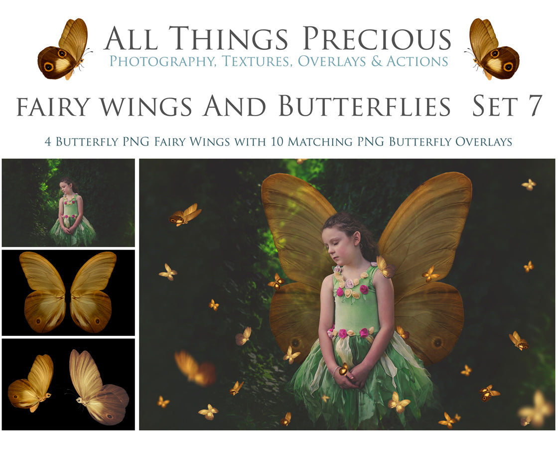 FAIRY WINGS and BUTTERFLIES Set 7