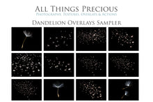 Load image into Gallery viewer, DANDELION WISHES Digital Overlays