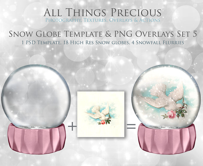 SNOW GLOBE Png Overlays and PSD Template No.5
