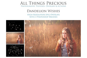 DANDELION WISHES Digital Overlays