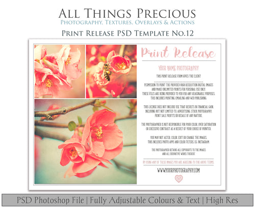PRINT RELEASE - PSD Template No. 12