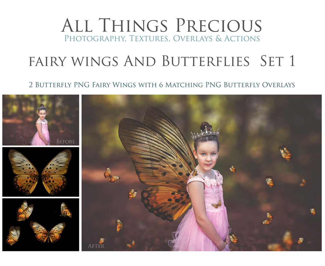 FAIRY WINGS and BUTTERFLIES Set 1