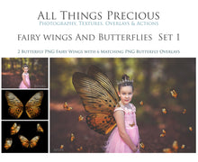 Load image into Gallery viewer, FAIRY WINGS and BUTTERFLIES Set 1
