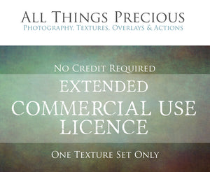 EXTENDED COMMERCIAL LICENCE