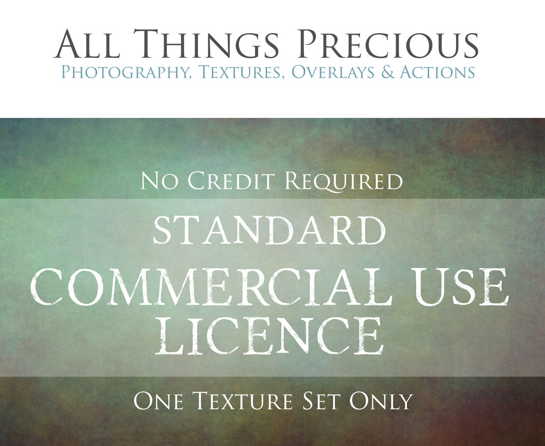 STANDARD COMMERCIAL LICENCE