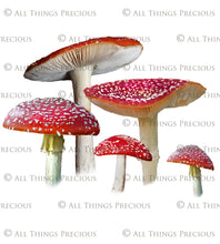 Load image into Gallery viewer, FAIRY MUSHROOM - AMANITA MUSCARIA Digital Overlays