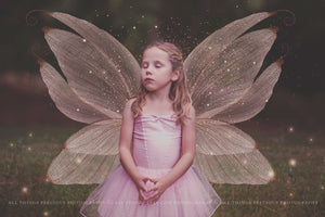 20 Png TRANSPARENT FAIRY WING Overlays Set 11