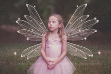 Load image into Gallery viewer, 14 Png WHITE FAIRY WING Overlays Set 4