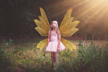 Load image into Gallery viewer, 14 Png GOLDEN FAIRY WING Overlays Set 2