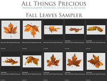 Load image into Gallery viewer, FALL LEAVES Digital OVERLAYS