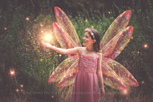 Load image into Gallery viewer, 20 Png TRANSPARENT FAIRY WING Overlays Set 18