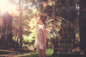 20 Png FAIRY WING Overlays Set 9