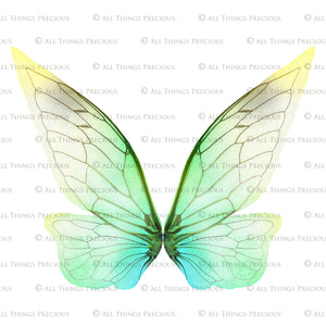 20 Png TRANSPARENT FAIRY WING Overlays Set 1
