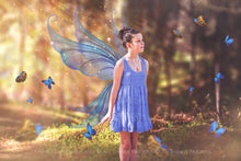 Load image into Gallery viewer, 20 Png TRANSPARENT FAIRY WING Overlays Set 37