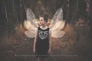 9 Png WHITE FAIRY WING Overlays Set 9