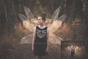 14 Png WHITE FAIRY WING Overlays Set 2