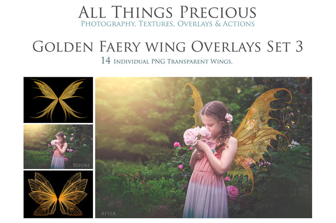 14 Png GOLDEN FAIRY WING Overlays Set 3