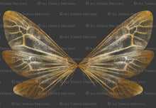 Load image into Gallery viewer, 14 Png GOLDEN FAIRY WING Overlays Set 5