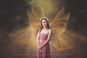 14 Png GOLDEN FAIRY WING Overlays Set 5