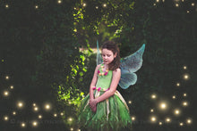 Load image into Gallery viewer, 20 Png TRANSPARENT FAIRY WING Overlays Set 1