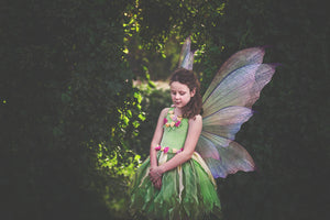 20 Png TRANSPARENT FAIRY WING Overlays Set 10