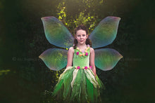 Load image into Gallery viewer, 103 FAIRY WING & OVERLAYS BUNDLE - Set 3