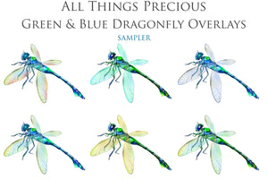 DRAGONFLY OVERLAYS - Green & Blue - Digital Overlays