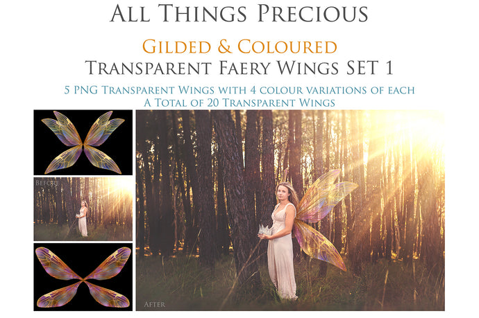20 FAIRY WING Overlays - Gold GILDED & COLOURED - TRANSPARENT Set 1