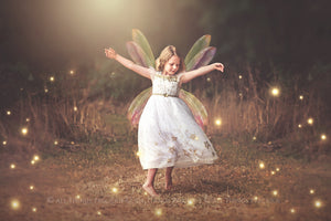 25 Png Transparent MULTICOLOURED FAIRY WING Overlays Set 2