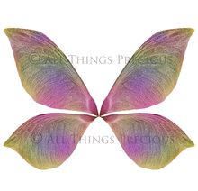 Load image into Gallery viewer, 20 Png TRANSPARENT NATURE FAIRY WING Overlays Set 2