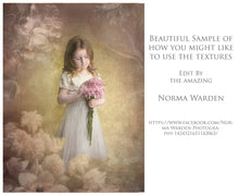 Load image into Gallery viewer, 10 OLD MASTERS Floral Background TEXTURES / DIGITAL BACKDROPS  - Set 5