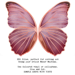 PNG FAIRY WINGS for CRICUT - Set 10