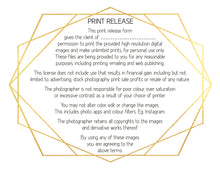 Load image into Gallery viewer, Template Set No.3  GIFT Certificate / MINI Session / PRINT Release BUNDLE