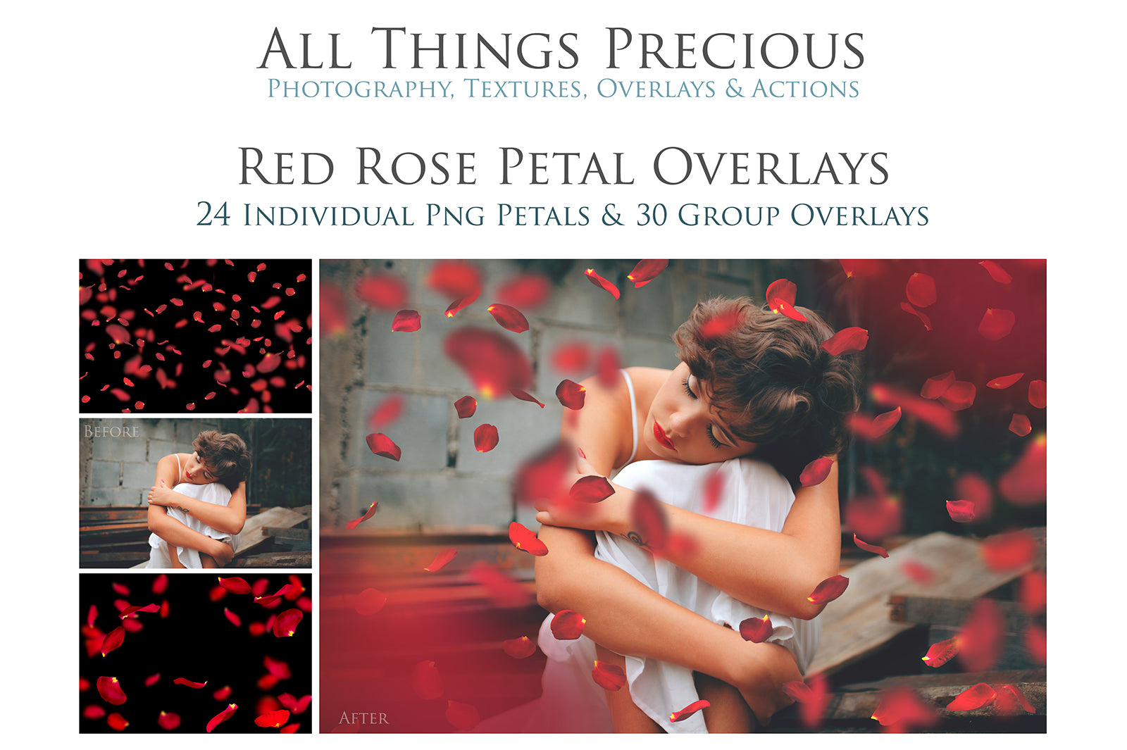 RED ROSE PETAL Digital Overlays