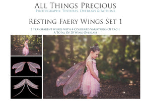 80 FAIRY WING OVERLAYS BUNDLE - Set 4