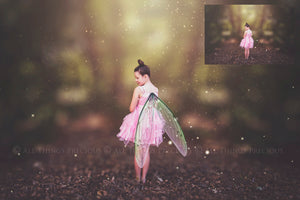 20 Png Digital FAIRY WING Overlays - RESTING - Set 2