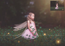 Load image into Gallery viewer, 20 Png Digital FAIRY WING Overlays - RESTING - Set 2