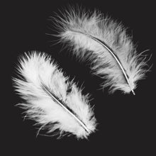 Load image into Gallery viewer, FLOATY FEATHERS Digital Overlays with Photoshop Brushes