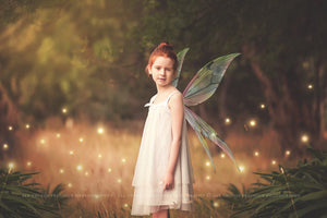 FAIRY GLOWS Digital Overlays