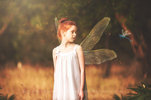 20 Png TRANSPARENT FAIRY WING Overlays Set 33