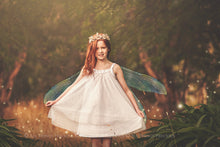 Load image into Gallery viewer, 20 Png FAIRY WING Overlays Set 33