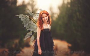 35 Png TRANSPARENT FAIRY WING Overlays - VARIETY PACK 3