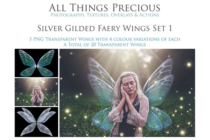 20 Digital FAIRY WING Overlays - SILVER GILDED & COLOURED - Png Overlays Set 1