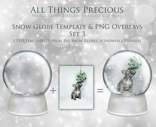 SNOW GLOBE Png Digital Overlays and PSD Template No.3